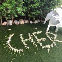 Foto diambil di Cher Resort oleh Supitsara B. pada 5/12/2018