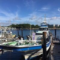 6/30/2018にRyo M.が金沢八景 忠彦丸 釣船・釣宿で撮った写真