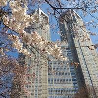 3/15/2013にmarloが新宿中央公園で撮った写真