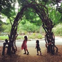 7/27/2013にCorinne M.がDescanso Gardensで撮った写真