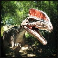 6/27/2012にCesar R.がField Station: Dinosaursで撮った写真