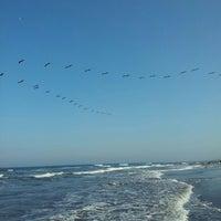 3/17/2013에 CECILIA H.님이 Playa Chachalacas에서 찍은 사진