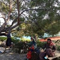 5/9/2019にHande ..がYörük Parkıで撮った写真