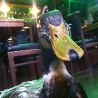 Снимок сделан в Wild Duck пользователем Eugene S. 3/1/2013