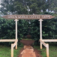 Green World Farms Wahiawa 36 Tips