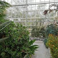 Pankow bärlauch volkspark botanischer Gärten der