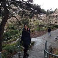 3/29/2014에 Chenyu L.님이 Kobe Terrace Park에서 찍은 사진