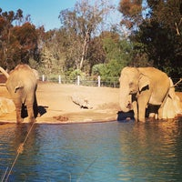 Das Foto wurde bei Elephant Odyssey von Rod B. am 1/18/2013 aufgenommen