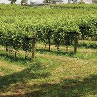 10/8/2014 tarihinde Sunset Meadow Vineyards  SMVziyaretçi tarafından Sunset Meadow Vineyards  SMV'de çekilen fotoğraf
