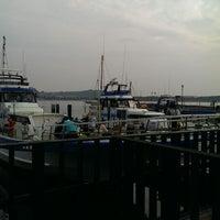 7/13/2013にdaisuke n.が金沢八景 忠彦丸 釣船・釣宿で撮った写真