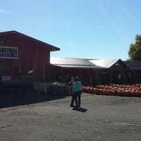 Kelly S Farm Market Farmers Market In Hilton