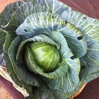 Foto tirada no(a) Mueller Farmers Market por Marta T. em 12/16/2012