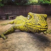 2/7/2013에 Raymond L.님이 Auckland Zoo에서 찍은 사진