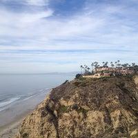 12/15/2013にStella B.がLa Jolla Cliffsで撮った写真