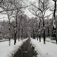 Das Foto wurde bei Stadtpark von Ulvi İ. am 2/24/2013 aufgenommen