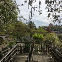 4/26/2018에 Monica K.님이 Kobe Terrace Park에서 찍은 사진