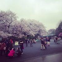 3/27/2013 tarihinde kurock628ziyaretçi tarafından Ueno Park'de çekilen fotoğraf