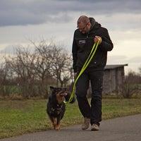 Das Foto wurde bei Der Hunde Coach von Der Hunde Coach am 11/10/2014 aufgenommen