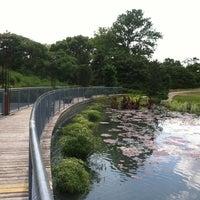 Photo prise au Garfield Park Conservatory par Noy F. le6/16/2012