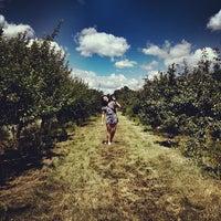 Foto diambil di SMOLAK FARMS oleh Michael S. pada 7/21/2012