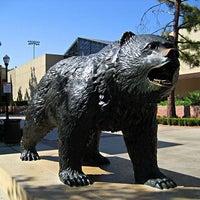 1/26/2012にBen B.がUCLA Bruin Statueで撮った写真