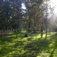 Bosque De San Juan De Aragón Parque