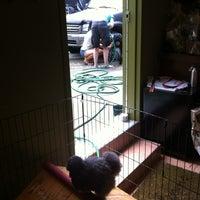 7/28/2012에 Deucesmom님이 Animal Nature에서 찍은 사진