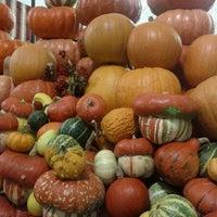 Снимок сделан в Даниловский рынок пользователем Michael N. 10/26/2011