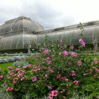 9/10/2011 tarihinde N 0.ziyaretçi tarafından Royal Botanic Gardens'de çekilen fotoğraf