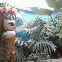Foto tirada no(a) Lanikai Tiki Bar por Allana L. em 5/5/2012