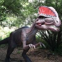 7/18/2012にRina S.がField Station: Dinosaursで撮った写真