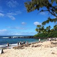 Foto tomada en Laniakea (Turtle) Beach por Amy G. el 10/30/2011