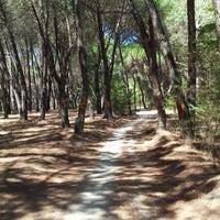 Foto tomada en Casa de Campo por David G. el 9/2/2012