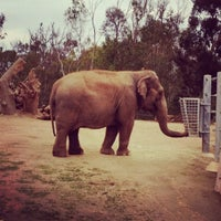 Das Foto wurde bei Elephant Odyssey von Daniel L. am 12/19/2011 aufgenommen