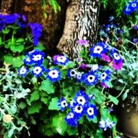 Das Foto wurde bei The Trails von Andy S. am 3/4/2012 aufgenommen