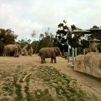 Das Foto wurde bei Elephant Odyssey von Olga J. am 2/27/2012 aufgenommen