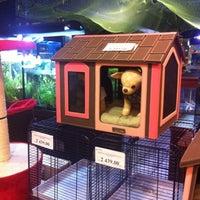 Das Foto wurde bei Cats & Dogs von Tatiana E. am 8/15/2012 aufgenommen