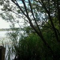 Photo prise au Arboretum Waterfront Trail par Gabby P. le6/17/2012