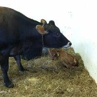 7/23/2012にMelissaがSprout Creek Farmで撮った写真