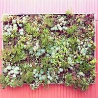 Photo prise au Flora Grubb Gardens par Brittany R. le3/28/2012