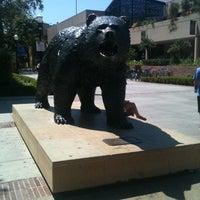 8/2/2012にPon L.がUCLA Bruin Statueで撮った写真