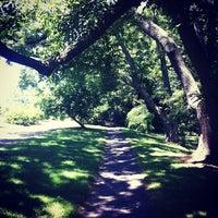 7/25/2012 tarihinde Steve G.ziyaretçi tarafından Arnold Arboretum'de çekilen fotoğraf