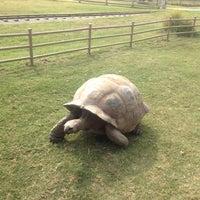Foto tomada en Tulsa Zoo por Honey Lani el 8/17/2012