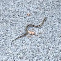 5/16/2012에 Kristin M.님이 Chattahoochee National Recreation Area에서 찍은 사진