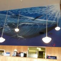 รูปภาพถ่ายที่ Blue Whale โดย Karma H. เมื่อ 3/16/2012