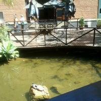Foto scattata a Shinkai Sushi da Luciano V. il 8/31/2012