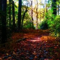 Das Foto wurde bei Lullwater Preserve von Michael A. am 11/4/2011 aufgenommen