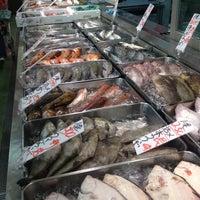 場 日野 角 魚類