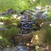 Снимок сделан в San Francisco Botanical Garden пользователем Erin P. 5/8/2012