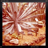Photo prise au Garfield Park Conservatory par Brendan S. le4/16/2011